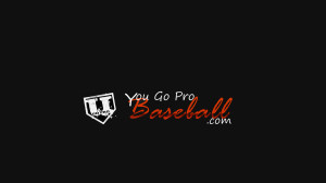 YouGoProBaseball.com - UGoProBaseball.com