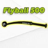 Flyball-alt