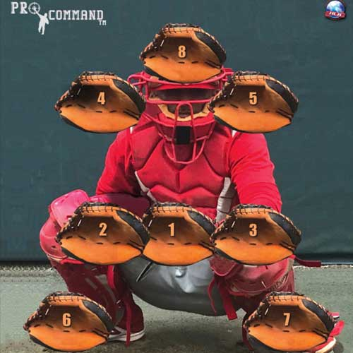 Pro Command Pitching Target