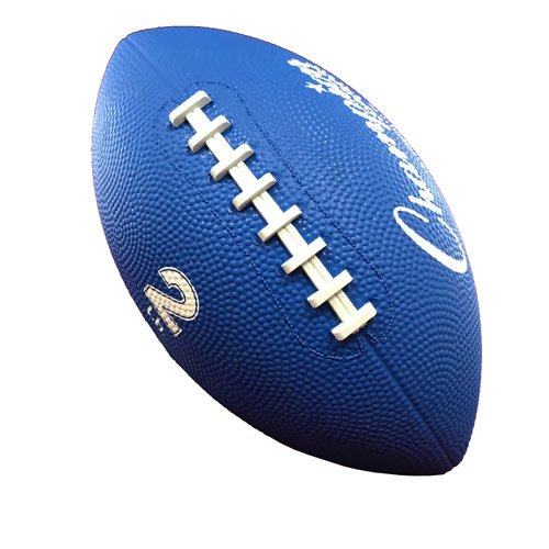 Weighted Footballs 2 lbs